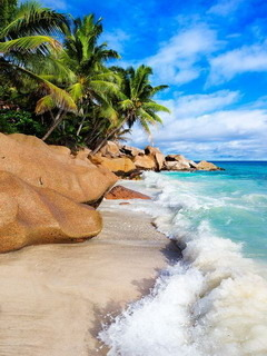 Beach La Digue Seychelles Mobile Wallpaper