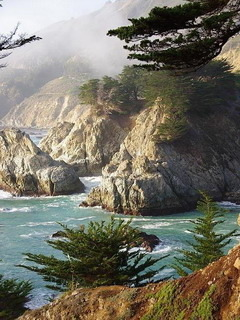 Big Sur Cove California Mobile Wallpaper