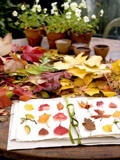 Autumn Leaves On Garden Mobile Wallpaper