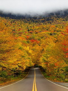 Smugglers Notch State Park In Vermont Mobile Wallpaper