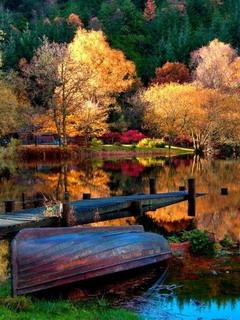 Autumn Colors Lake Mobile Wallpaper