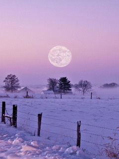 Winters Moonlight Mobile Wallpaper
