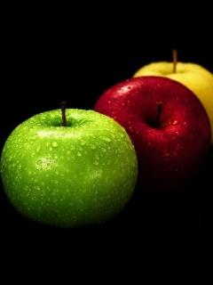 Dew Colors Apple Mobile Wallpaper