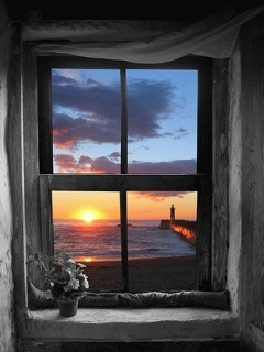 View Window Nature Mobile Wallpaper