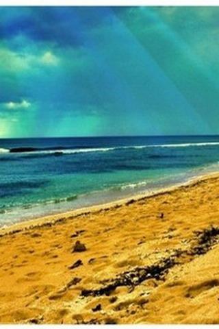 Beach Nature IPhone Wallpaper  Mobile Wallpaper