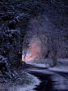 Winter Night Road Mobile Wallpaper