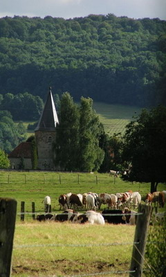 Village Countryside Champagne France Mobile Wallpaper