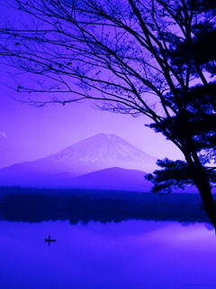 Heritage Mt Fuji Japan Mobile Wallpaper