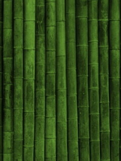 Green Bamboo Nature Mobile Wallpaper