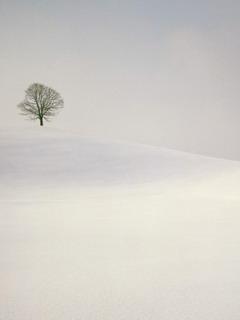 Snowy Hill Mobile Wallpaper
