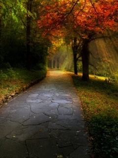 3D Autumn Walk Mobile Wallpaper