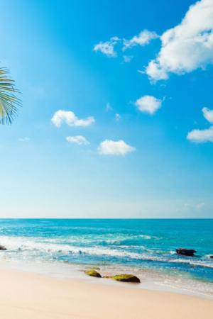Blue Beach Tropical Sunshine IPhone Wallpaper Mobile Wallpaper