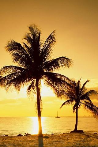 Hawaiin Sunset IPhone Wallpaper Mobile Wallpaper