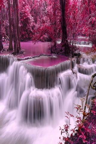 Pink Waterfalls Nature Trees Mobile Wallpaper