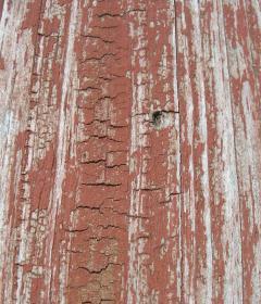 Wood Mobile Wallpaper
