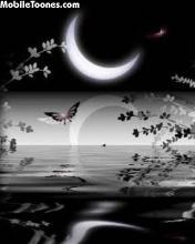 Black Night Mobile Wallpaper