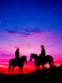 2 Man Stay With Horse Mobile Wallpaper