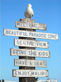 Beautiful Paradise Cove Mobile Wallpaper