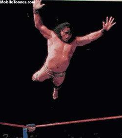 Jimmy Snuka Wrestling Photo Mobile Wallpaper