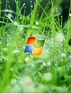 Windows Vista Mobile Wallpaper
