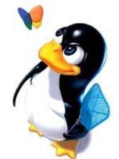 Linux Penguin Mobile Wallpaper