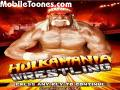 Hulkamania Wrestling games