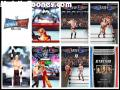 WWE Smackdown vs. RAW 2008 games