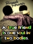 True Friends Forever wallpapers