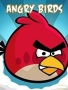Angry Red Bird Free Mobile Wallpapers