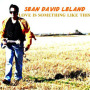 Sean David Leland CD Cover2 wallpapers