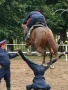 Horse Jump wallpapers