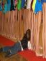 Little Naug wallpapers
