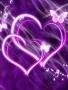 Purple Hearts wallpapers