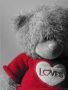 Love Bear wallpapers