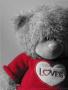 Love Bear wallpapers