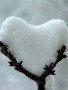 Snow Love wallpapers