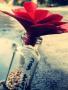 Love U wallpapers
