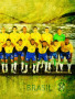 Brasil Team wallpapers