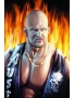 Wwe Stone Cold wallpapers