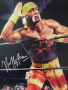 Hulk Hogan wallpapers