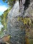Manikyadhara Falls wallpapers