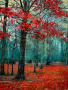 Autumn Color wallpapers