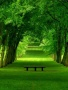 Waiting Bench wallpapers