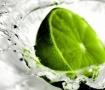 Green Lemon wallpapers