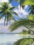 Island wallpapers