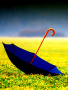 Umbrella On Field wallpapers