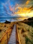 Path To Beach wallpapers