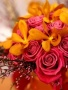 Lovely Roses wallpapers
