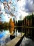Lake Autumn wallpapers