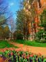 Lovely Garden wallpapers